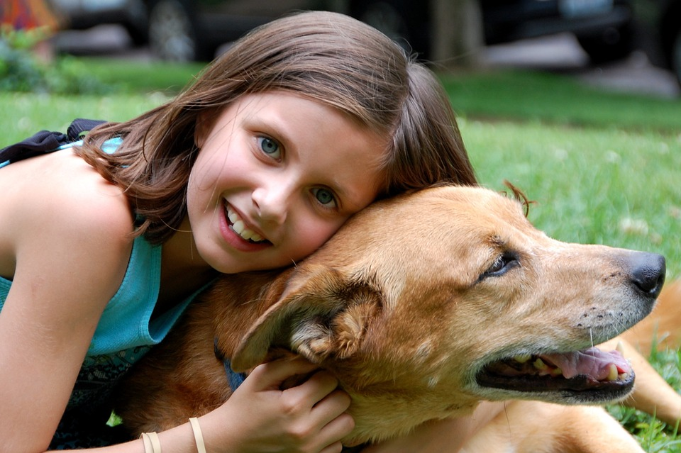 How To Care For A Pet In A Household With Kids